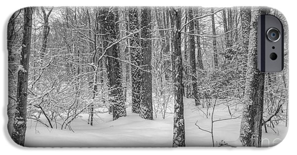 Snow Covered Trees iPhone Cases - In full season iPhone Case by Marco Crupi