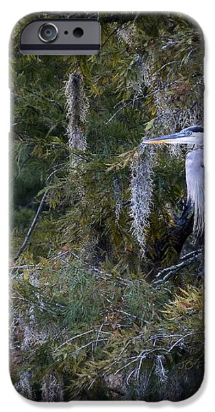 In His Element  iPhone Case by JC Findley