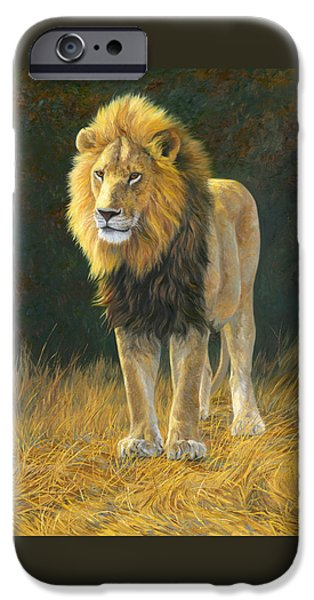 Lion iPhone Cases - In His Prime iPhone Case by Lucie Bilodeau