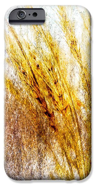 Fine Art Abstract iPhone Cases - In Memory Of Wheat iPhone Case by Bob Orsillo