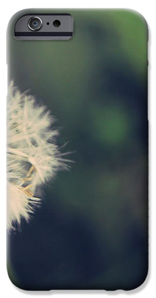 In the Afterglow iPhone Case by Laurie Search