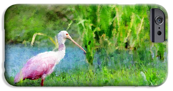 Spoonbill iPhone Cases - In The Bayou #1 iPhone Case by Betty LaRue