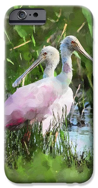 Spoonbill iPhone Cases - In The Bayou #2 iPhone Case by Betty LaRue