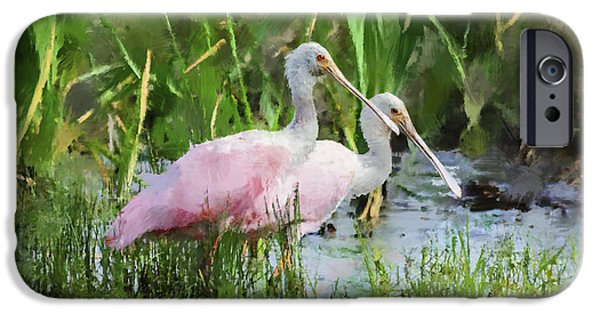 Spoonbill iPhone Cases - In The Bayou #3 iPhone Case by Betty LaRue