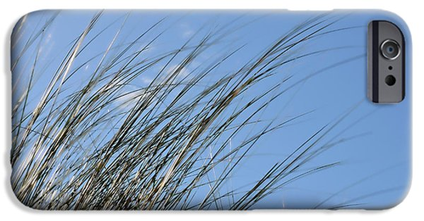 Florida House Photographs iPhone Cases - In The Breeze - Soft Grasses By Sharon Cummings iPhone Case by Sharon Cummings