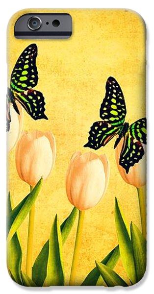 In the Butterfly Garden iPhone Case by Edward Fielding
