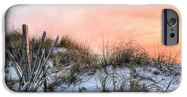 Florida Panhandle iPhone Cases - In the Dunes of Pensacola Beach iPhone Case by JC Findley