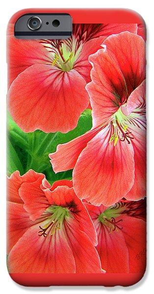 In The Garden. Geranium iPhone Case by Ben and Raisa Gertsberg