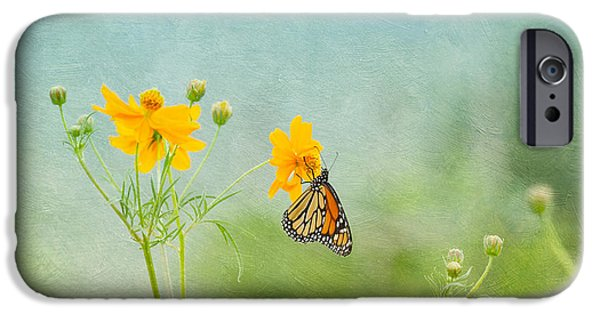 Botanical iPhone Cases - In The Garden - Monarch Butterfly iPhone Case by Kim Hojnacki