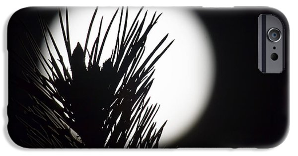Moonscape iPhone Cases - In the Pines iPhone Case by Jim Garrison