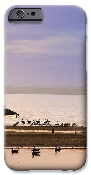 In The Quiet Morning iPhone Case by Bill Cannon