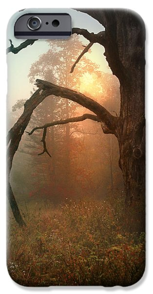 Peacefull iPhone Cases - In the Stillness iPhone Case by Rob Blair