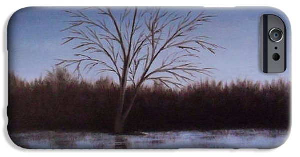 Willow Lake iPhone Cases - In the twilight iPhone Case by Andreja Dujnic
