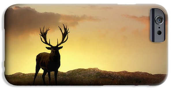 Deer Digital iPhone Cases - In the Warmth of the Setting Sun iPhone Case by Jennifer Woodward