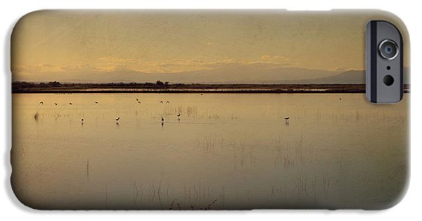 Distant iPhone Cases - In These Peaceful Moments iPhone Case by Laurie Search