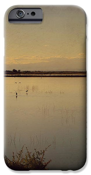 In These Peaceful Moments iPhone Case by Laurie Search