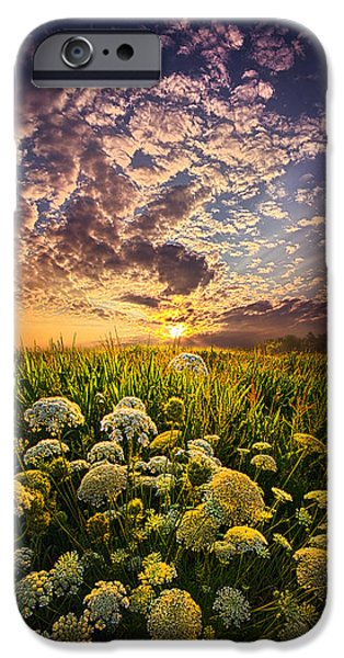 Farming Photographs iPhone Cases - In This Moment We Are Infinite iPhone Case by Phil Koch
