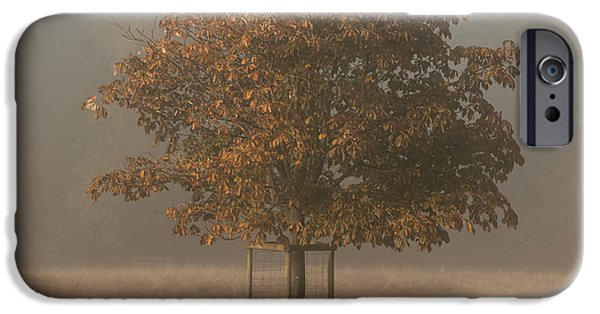 Autumn iPhone Cases - In training iPhone Case by Chris Fletcher