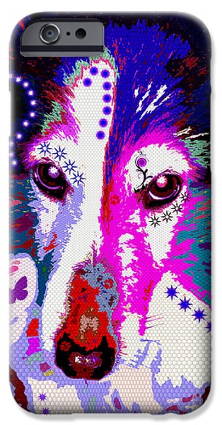 Shetland Sheepdog iPhone Cases - In Your Eyes iPhone Case by Colleen Kammerer