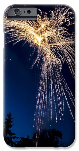 Tree Art Print iPhone Cases - Independence Day 2014 8 iPhone Case by Alan Marlowe