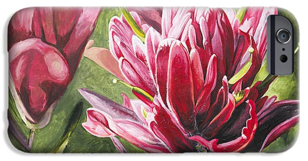 Photo Paintings iPhone Cases - Indian Paintbrush iPhone Case by Aaron Spong