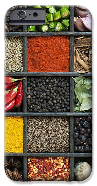 Indian Spice Grid iPhone Case by Tim Gainey