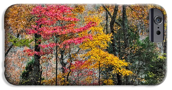 Indiana Autumn iPhone Cases - Indiana Fall Color iPhone Case by Alan Toepfer