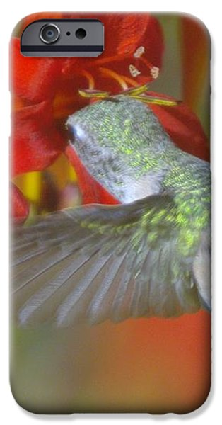 INDULGENCE  iPhone Case by Jeff  Swan