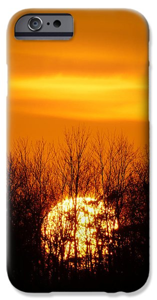 Fireball iPhone Cases - Inferno In the Trees iPhone Case by Bill Pevlor