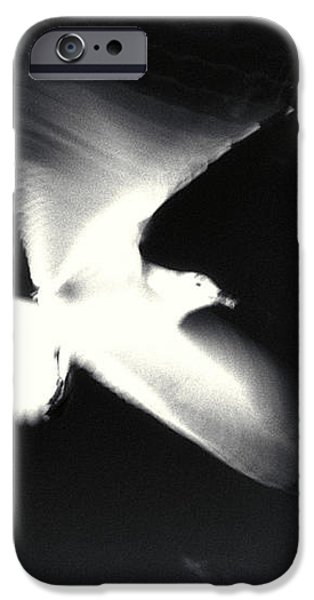 Infrared Gulls iPhone Case by Jerry McElroy