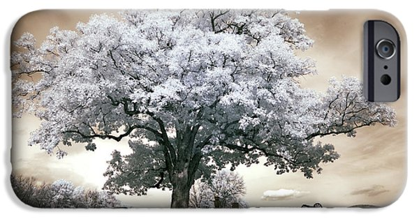 Devils Den iPhone Cases - Infrared tree on a hill in Gettysburg iPhone Case by Paul W Faust -  Impressions of Light