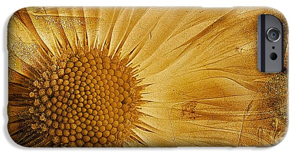 Petals Digital Art iPhone Cases - Infusion iPhone Case by John Edwards