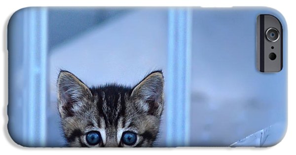 Stray iPhone Cases - Innocence iPhone Case by Camille Lopez