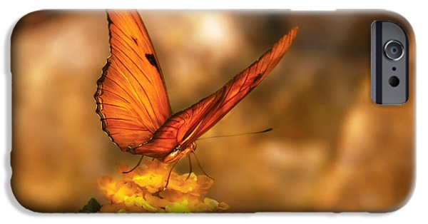 Butterfly iPhone Cases - Insect - Butterfly - Just a bit of orange  iPhone Case by Mike Savad