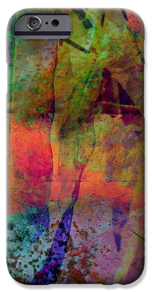 Inside Autumn iPhone Case by Shirley Sirois