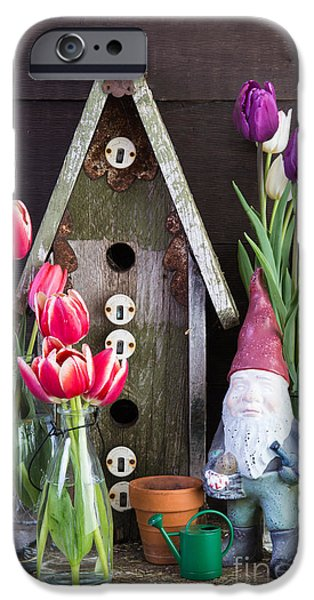 Birdhouse iPhone Cases - Inside the Garden Shed iPhone Case by Edward Fielding