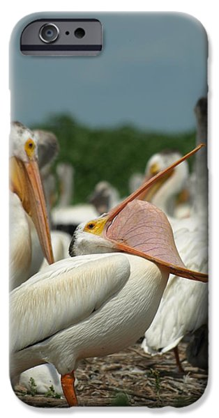 Mystifying iPhone Cases - InsideOUT iPhone Case by James Peterson