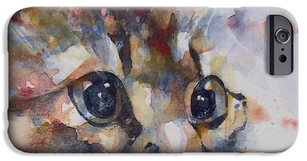 Feline Art iPhone Cases - Intent iPhone Case by Paul Lovering
