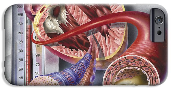 Airbrush iPhone Cases - Interior View Of Heart With Detail iPhone Case by TriFocal Communications