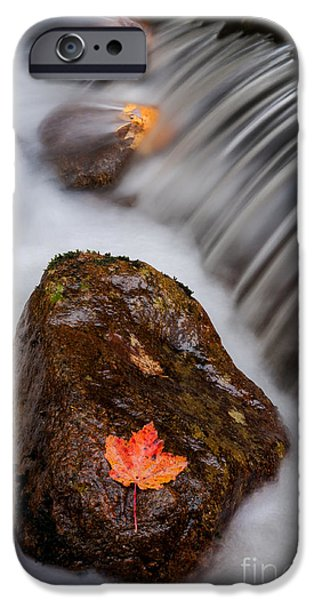 Nature Scene iPhone Cases - Autumns Flow - A Semi Abstract iPhone Case by Thomas Schoeller