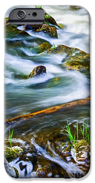 Lichens iPhone Cases - Intimate with river iPhone Case by Elena Elisseeva