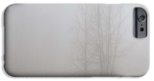 Eerie iPhone Cases - Into the Fog iPhone Case by Angie Vogel