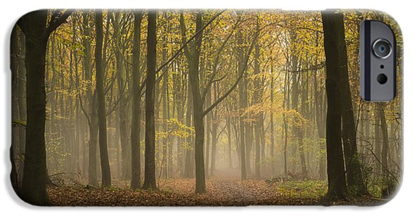 Pathway iPhone Cases - Into The Mist iPhone Case by Anne Gilbert