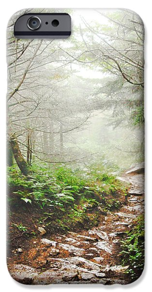Recently Sold -  - Fog Mist iPhone Cases - Into the Mist iPhone Case by Zak Collins