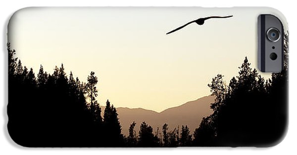 Flight iPhone Cases - Into the Sunset iPhone Case by Cindy Singleton