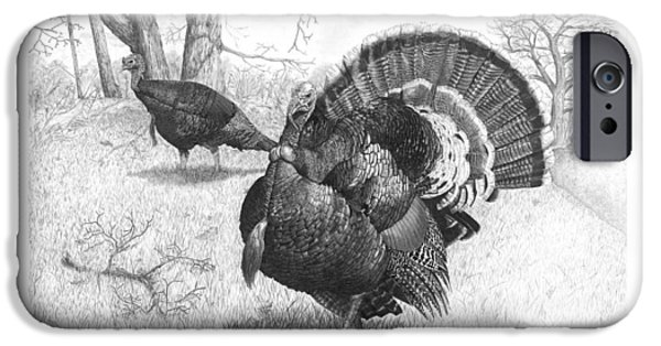 Eastern Wild Turkey Drawings iPhone Cases - Iowa Gobbler iPhone Case by Cody Thorne
