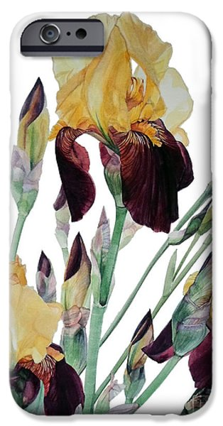 Botanic Illustration iPhone Cases - Iris Beethoven Romance in Fa major iPhone Case by Greta Corens