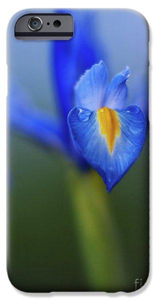 Iris iPhone Cases - Iris Blues iPhone Case by Mike Reid