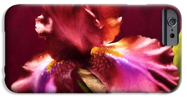Yellow Bearded Iris iPhone Cases - Iris I iPhone Case by April Moen