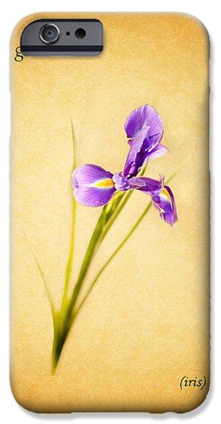 Iris iPhone Cases - Iris iPhone Case by Mark Rogan